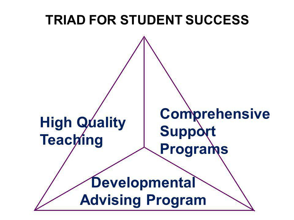 TRIAD FOR STUDENT SUCCESS High Quality Teaching Comprehensive Support Programs Developmental Advising Program