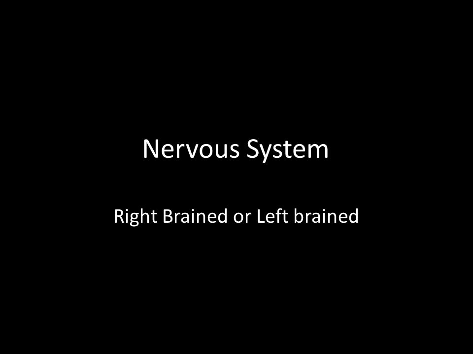 Nervous System Right Brained or Left brained