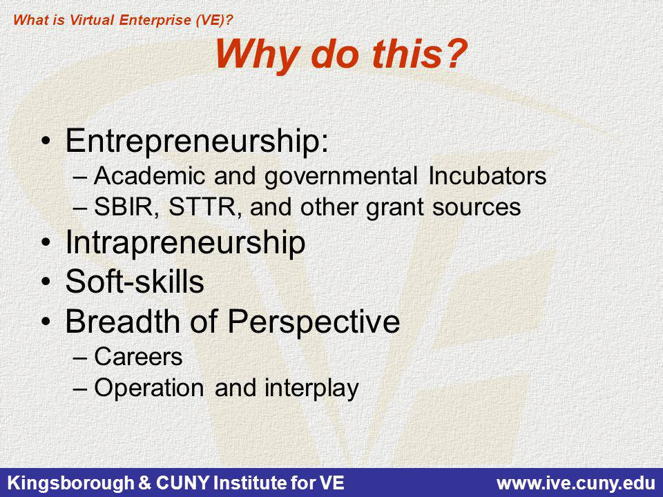 Kingsborough & CUNY Institute for VE www.ive.cuny.edu Why do this? Entrepreneurship: –Academic and governmental Incubators –SBIR, STTR, and other gran