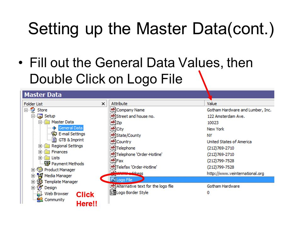 Setting up the Master Data(cont.) Fill out the General Data Values, then Double Click on Logo File Click Here!!
