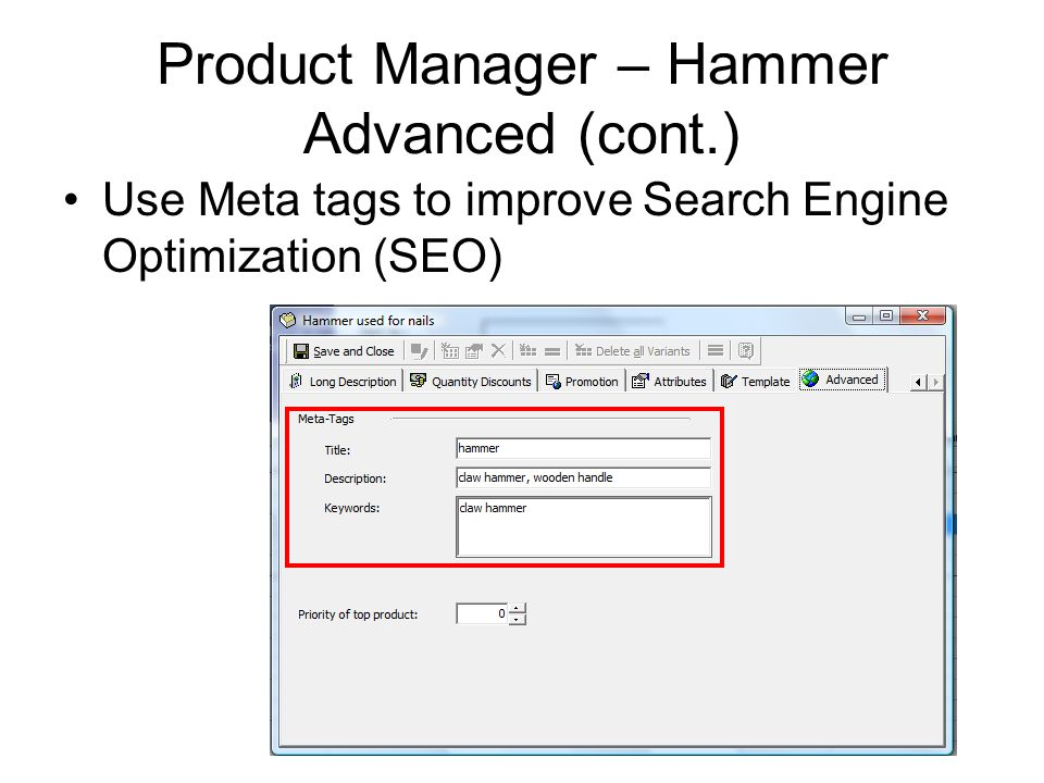 Product Manager – Hammer Advanced (cont.) Use Meta tags to improve Search Engine Optimization (SEO)