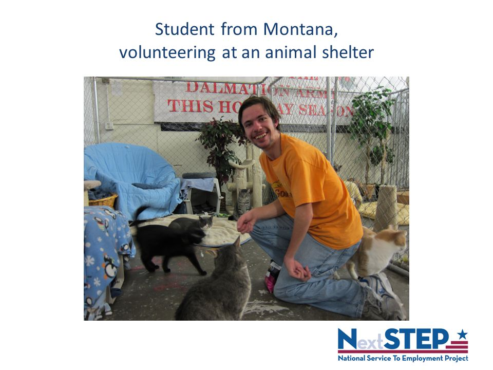 Student from Montana, volunteering at an animal shelter