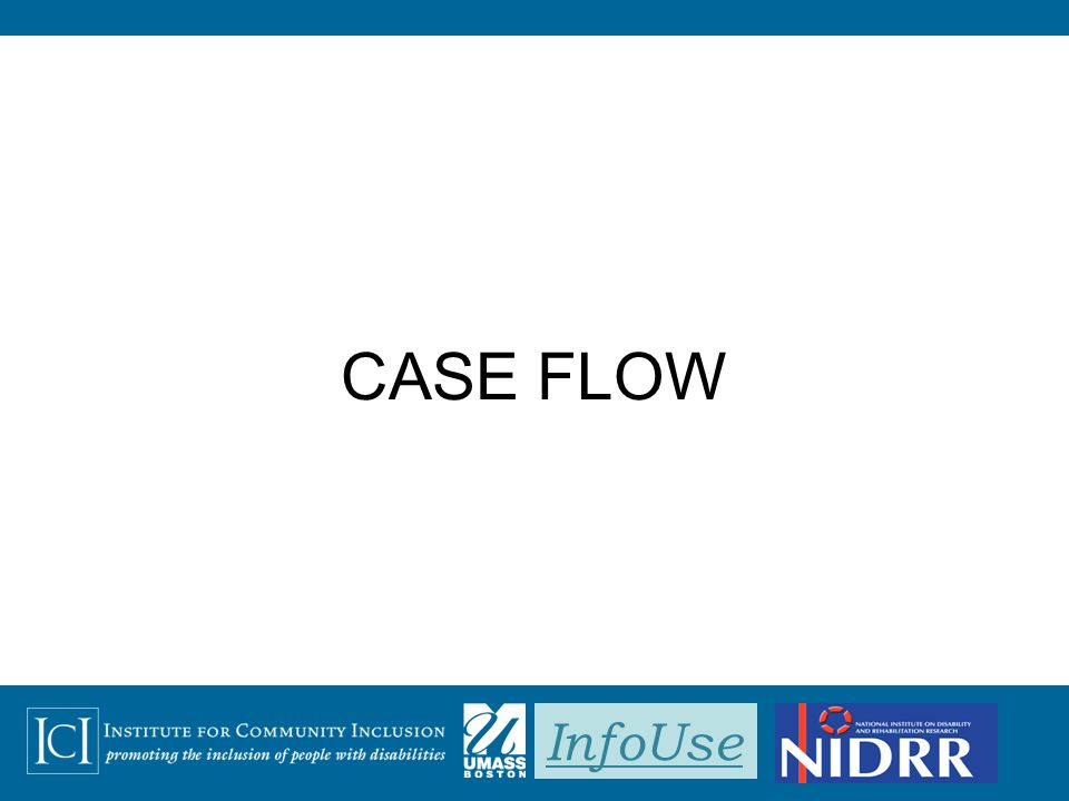 InfoUse CASE FLOW