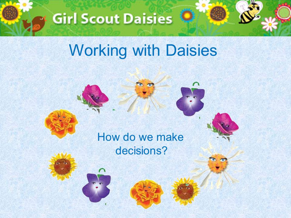 Working with Daisies How do we make decisions?
