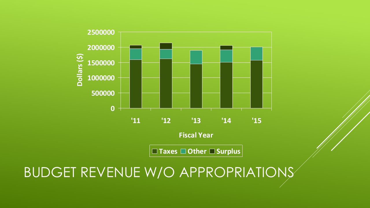 BUDGET REVENUE W/O APPROPRIATIONS