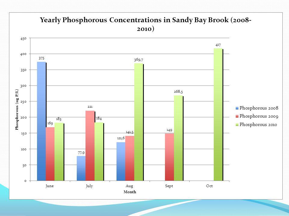 Average Phosphorous & Cholorphyl Lake Carmi 1979 - 2010