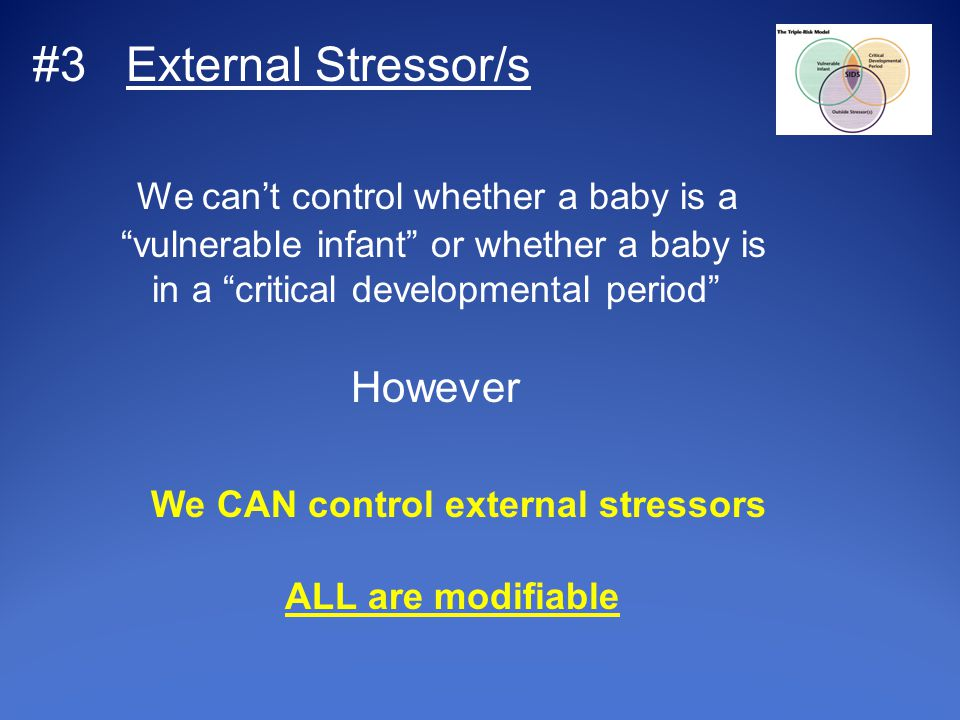 #3 External Stressor/s We can't control whether a baby is a vulnerable infant or whether a baby is in a critical developmental period However We CAN control external stressors ALL are modifiable