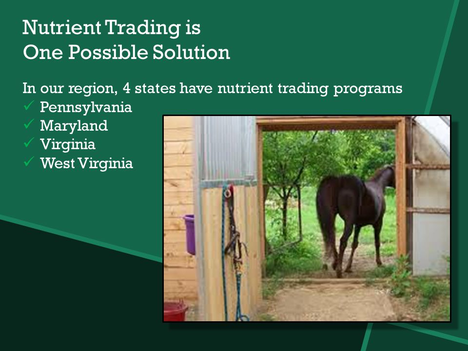 Nutrient Trading is One Possible Solution In our region, 4 states have nutrient trading programs Pennsylvania Maryland Virginia West Virginia