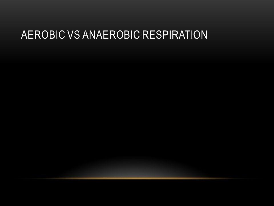 AEROBIC VS ANAEROBIC RESPIRATION