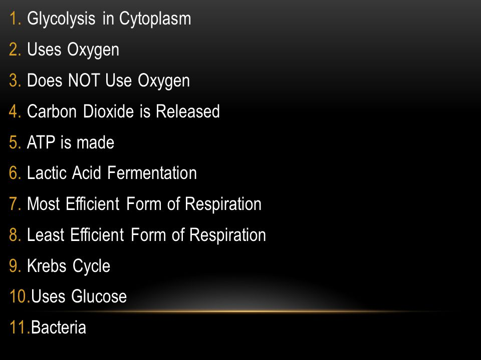 1.Glycolysis in Cytoplasm 2.Uses Oxygen 3.Does NOT Use Oxygen 4.Carbon Dioxide is Released 5.ATP is made 6.Lactic Acid Fermentation 7.Most Efficient Form of Respiration 8.Least Efficient Form of Respiration 9.Krebs Cycle 10.Uses Glucose 11.Bacteria