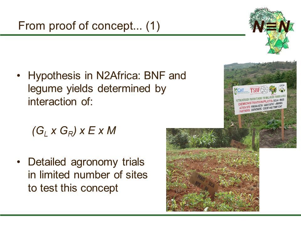 From proof of concept... (1) Hypothesis in N2Africa: BNF and legume yields determined by interaction of: (G L x G R ) x E x M Detailed agronomy trials