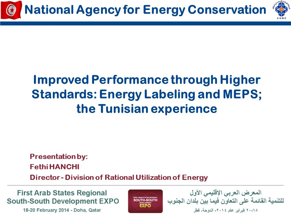 ANME (Cordination, monitoring & Evaluation) Ministry of Trade (Manufacturers, Importers & Retailers Ministry of Industry (Manufacturers) INNORPI (Norms and Standards ) CETIME (Testing facilities) FEDELEC (Professional organization, communication, information); ODC (Consumer rights Organization; NGO); Steps of Energy Labeling & MEPS Programs Institutional and Capacity Building Identification of national execution and implementation agencies & organizations