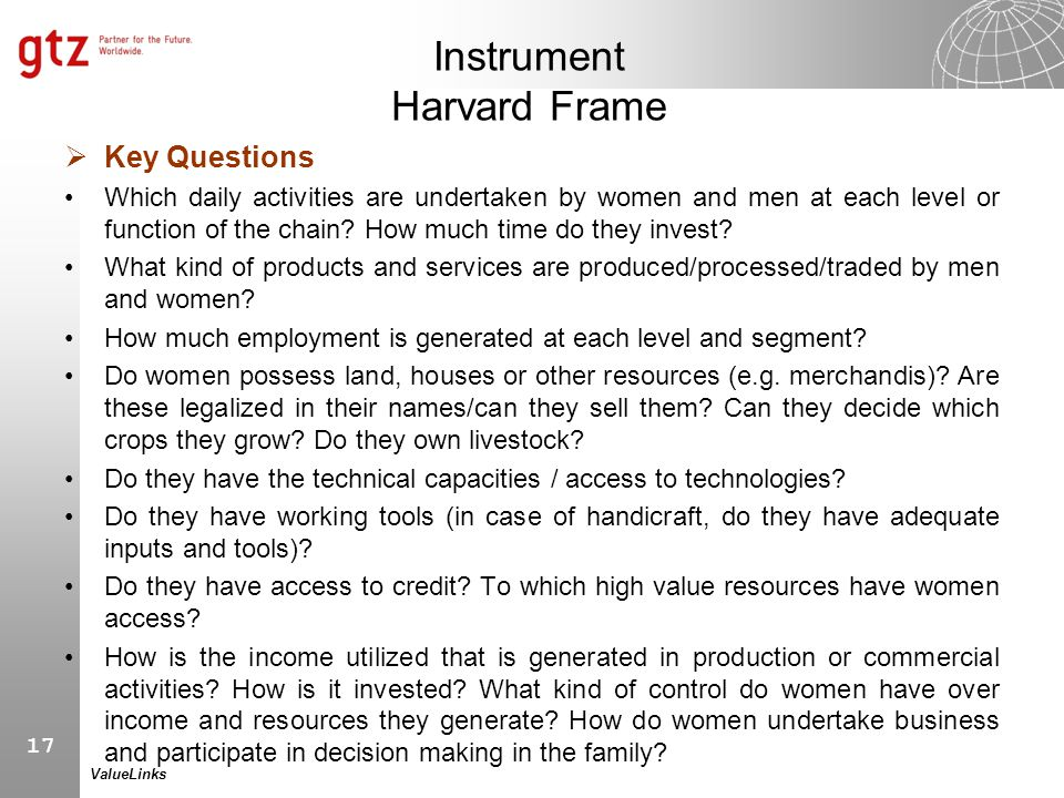 17 ValueLinks Instrument Harvard Frame  Key Questions Which daily activities are undertaken by women and men at each level or function of the chain?