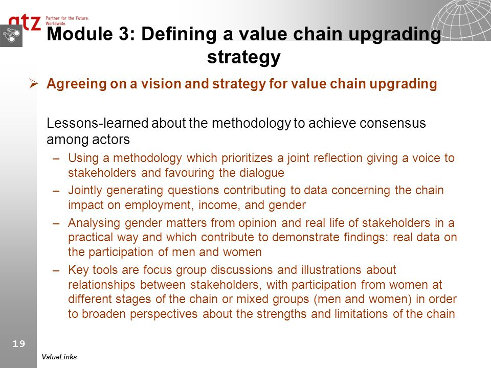 19 ValueLinks Module 3: Defining a value chain upgrading strategy  Agreeing on a vision and strategy for value chain upgrading Lessons-learned about