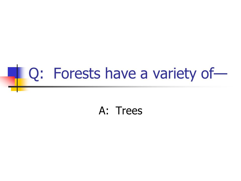 Q: Forests have a variety of— A: Trees