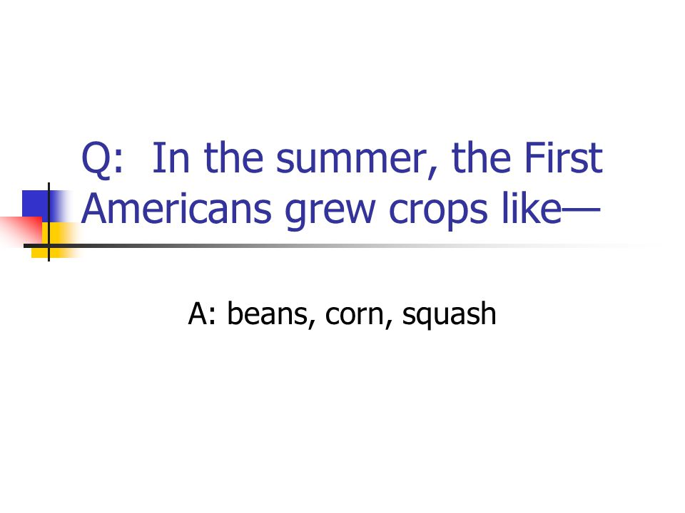 Q: In the summer, the First Americans grew crops like— A: beans, corn, squash