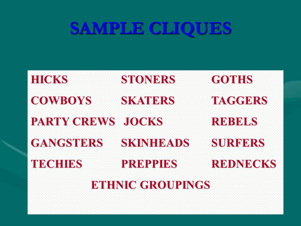 SAMPLE CLIQUES HICKSSTONERSGOTHS COWBOYSSKATERSTAGGERS PARTY CREWS JOCKSREBELS GANGSTERSSKINHEADSSURFERS TECHIESPREPPIESREDNECKS ETHNIC GROUPINGS