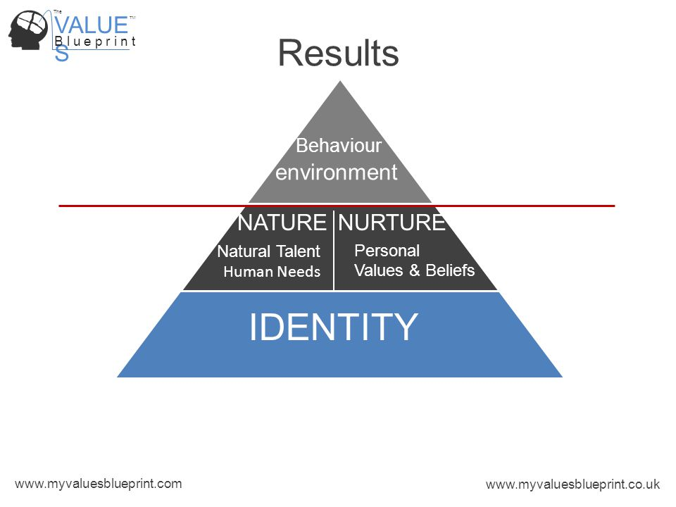 VALUE S B l u e p r i n t TM The www.myvaluesblueprint.com www.myvaluesblueprint.co.uk IDENTITY Behaviour Results Natural Talent Human Needs NATURENURTURE Personal Values & Beliefs environment