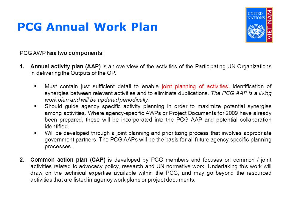 PCG Annual Work Plan PCG AWP has two components: 1.Annual activity plan (AAP) is an overview of the activities of the Participating UN Organizations in delivering the Outputs of the OP.