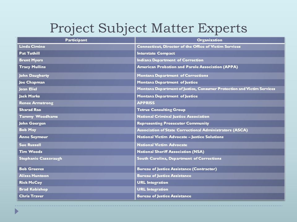 Project Subject Matter Experts