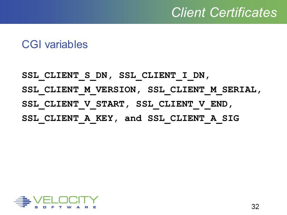 32 Client Certificates CGI variables SSL_CLIENT_S_DN, SSL_CLIENT_I_DN, SSL_CLIENT_M_VERSION, SSL_CLIENT_M_SERIAL, SSL_CLIENT_V_START, SSL_CLIENT_V_END, SSL_CLIENT_A_KEY, and SSL_CLIENT_A_SIG