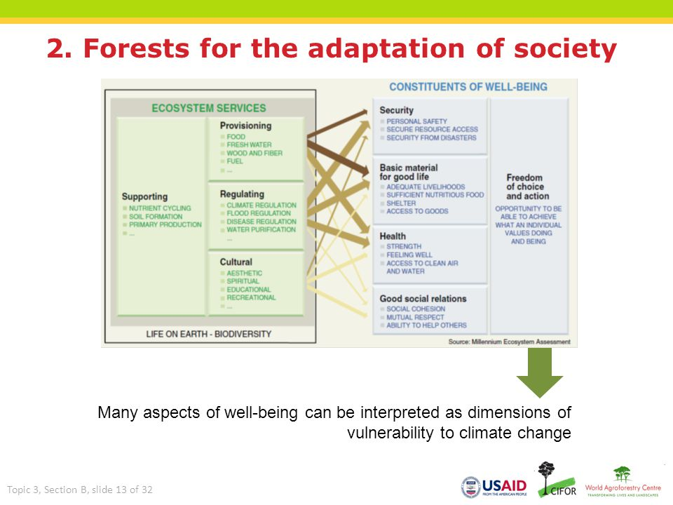 2. Forests for the adaptation of society Many aspects of well-being can be interpreted as dimensions of vulnerability to climate change Topic 3, Secti