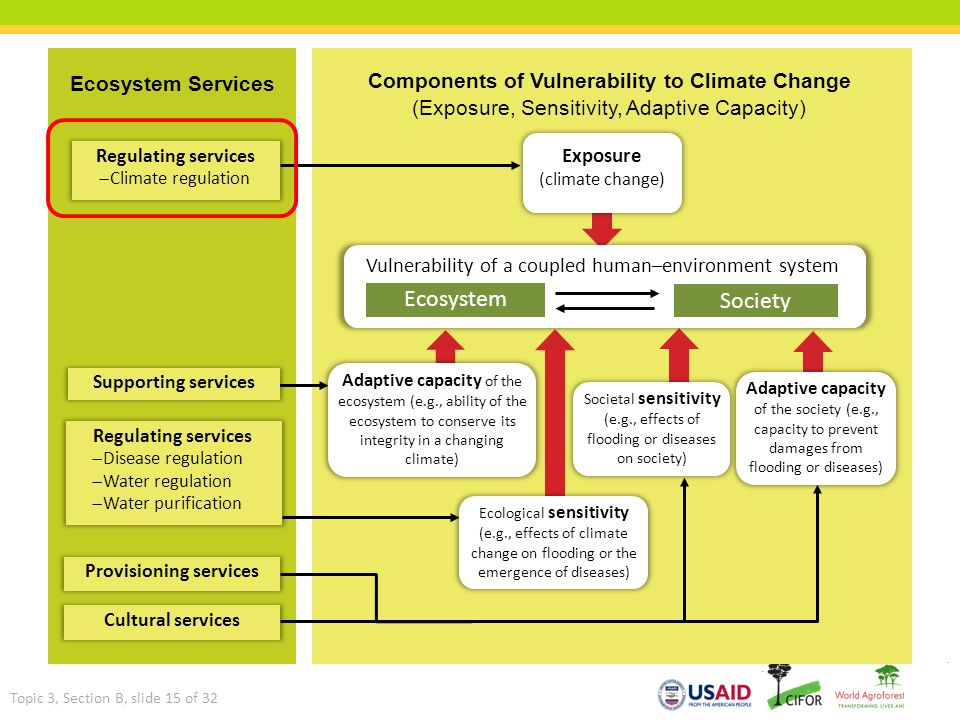 Ecosystem Services Components of Vulnerability to Climate Change (Exposure, Sensitivity, Adaptive Capacity) Ecosystem Services Vulnerability of a coup