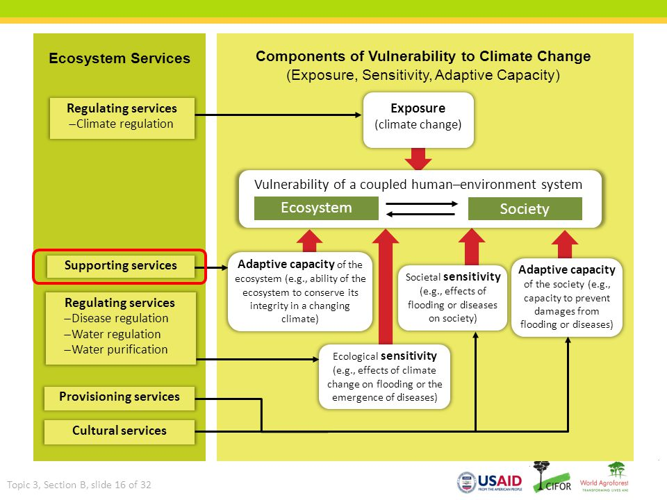 Ecosystem services Components of Vulnerability to Climate Change (Exposure, Sensitivity, Adaptive Capacity) Ecosystem Services Topic 3, Section B, sli