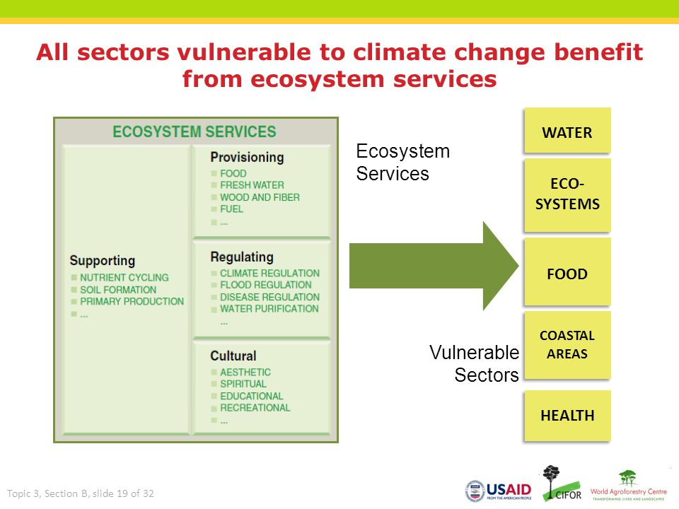 All sectors vulnerable to climate change benefit from ecosystem services Ecosystem Services Vulnerable Sectors WATER ECO- SYSTEMS FOOD COASTAL AREAS H