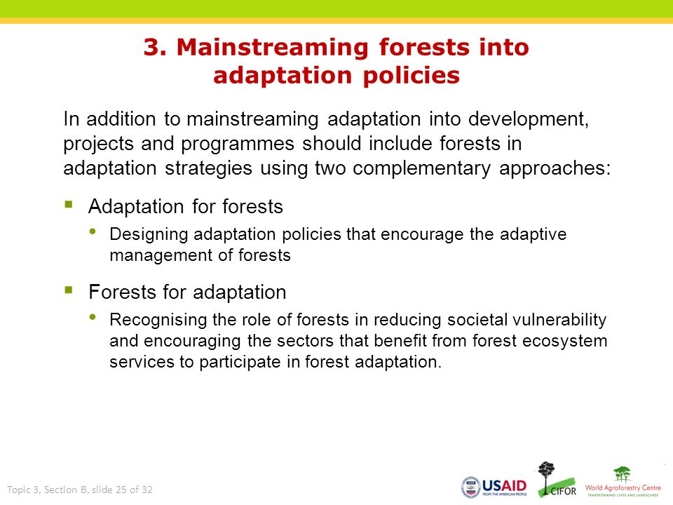 3. Mainstreaming forests into adaptation policies In addition to mainstreaming adaptation into development, projects and programmes should include for