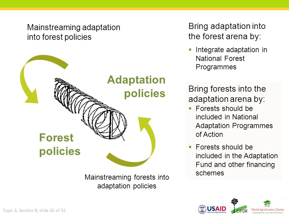 Mainstreaming forests into adaptation policies Forest policies Adaptation policies Bring forests into the adaptation arena by:  Forests should be inc