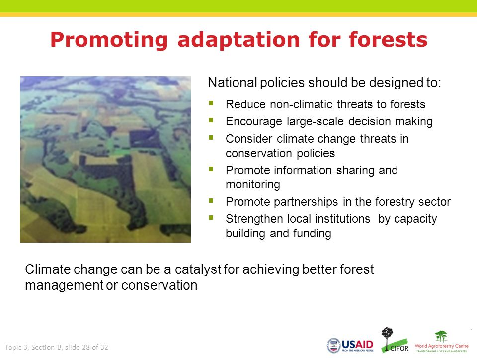 Promoting adaptation for forests National policies should be designed to:  Reduce non-climatic threats to forests  Encourage large-scale decision ma