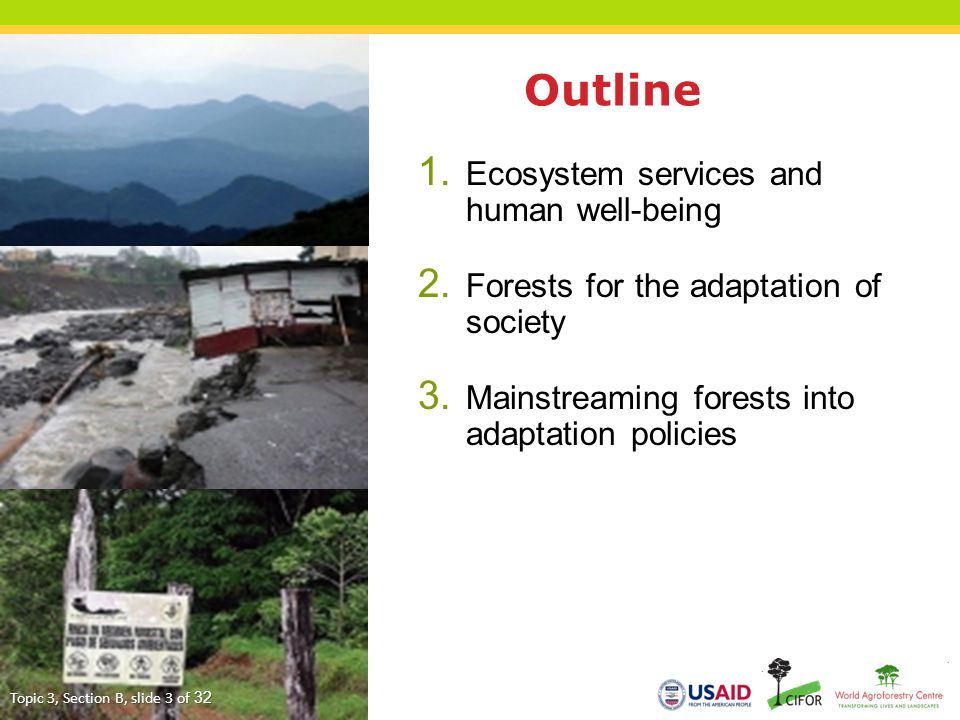 1. Ecosystem services and human well-being 2. Forests for the adaptation of society 3. Mainstreaming forests into adaptation policies Outline Topic 3,