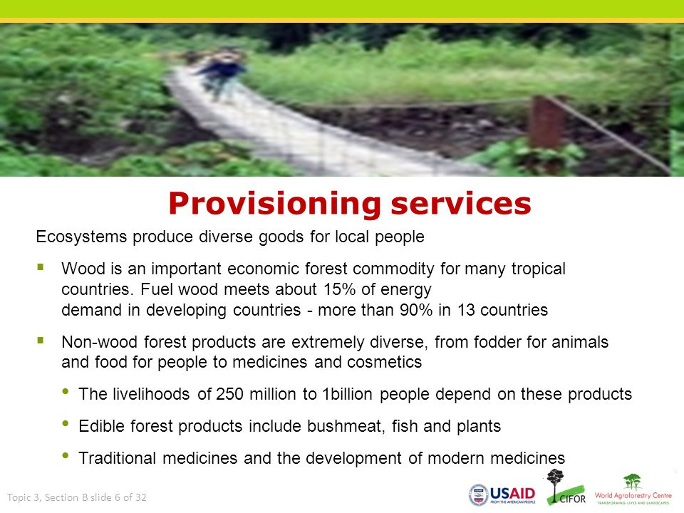 Provisioning services Ecosystems produce diverse goods for local people  Wood is an important economic forest commodity for many tropical countries.