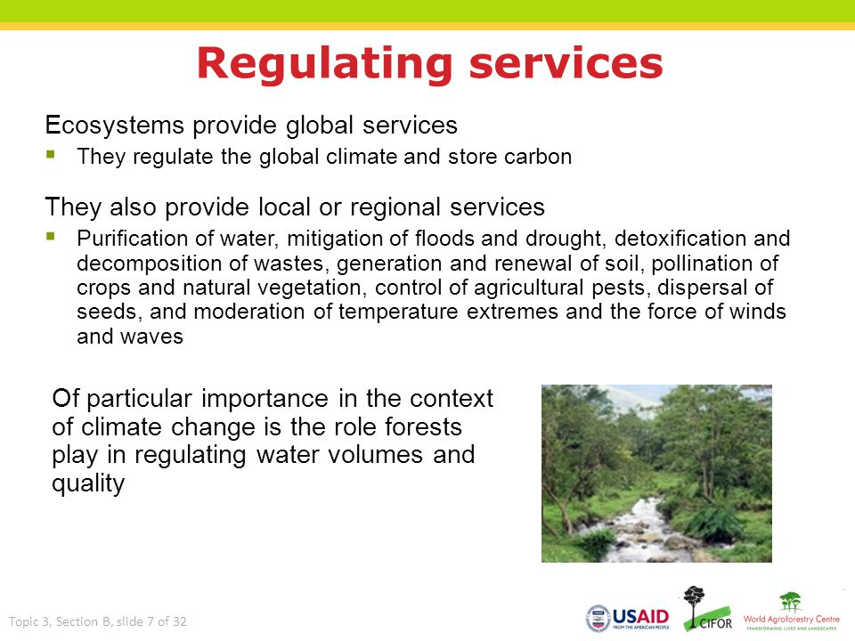 Cultural services  For many local communities, ecosystems have spiritual and religious value  Ecosystem changes can affect cultural identity and social stability  Other services, such as aesthetic, recreation and heritage, are enjoyed by local people, visitors and those for whom the ecosystem has a symbolic importance Topic 3, Section B, slide 8 of 32
