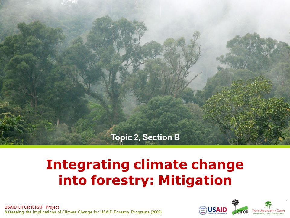 USAID-CIFOR-ICRAF Project Assessing the Implications of Climate Change for USAID Forestry Programs (2009) 1 Integrating climate change into forestry: Mitigation Topic 2, Section B