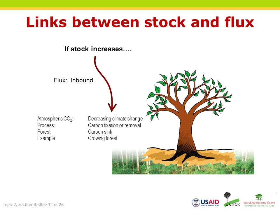 Links between stock and flux If stock increases….