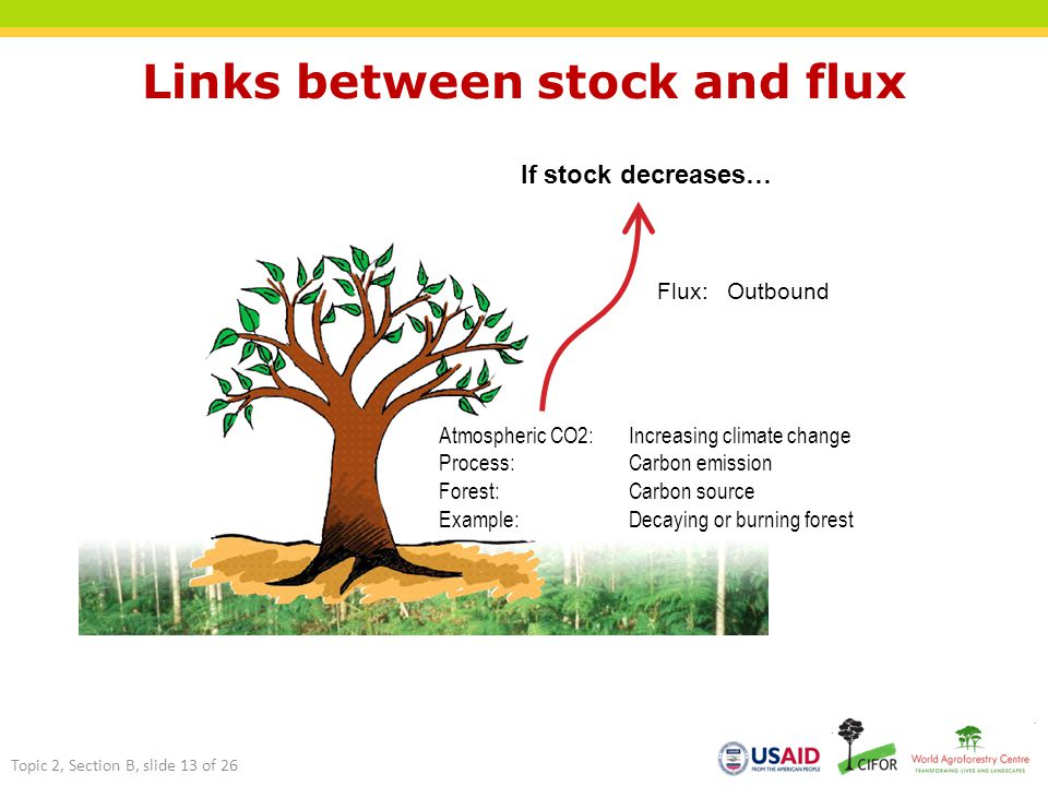 Links between stock and flux If stock decreases… Flux: Outbound Atmospheric CO2: Increasing climate change Process:Carbon emission Forest:Carbon source Example:Decaying or burning forest Topic 2, Section B, slide 13 of 26