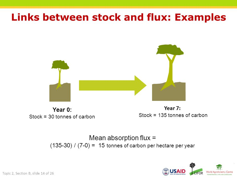 Links between stock and flux: Examples Year 0: Stock = 30 tonnes of carbon Year 7: Stock = 135 tonnes of carbon Mean absorption flux = (135-30) / (7-0) = 15 tonnes of carbon per hectare per year Topic 2, Section B, slide 14 of 26