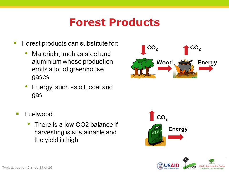 Forest Products Energy CO 2 Wood Energy CO 2  Forest products can substitute for: Materials, such as steel and aluminium whose production emits a lot of greenhouse gases Energy, such as oil, coal and gas  Fuelwood: There is a low CO2 balance if harvesting is sustainable and the yield is high Topic 2, Section B, slide 19 of 26