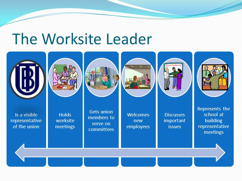 The Worksite Leader Is a visible representative of the union Holds worksite meetings Gets union members to serve on committees Welcomes new employees