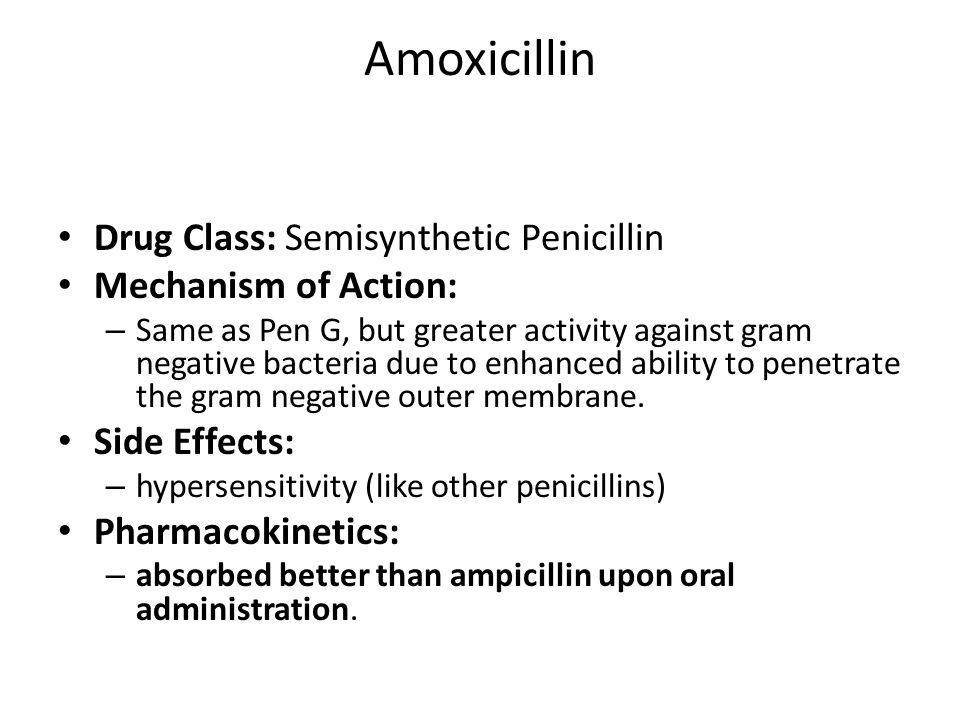 Amoxicillin versus penicillin