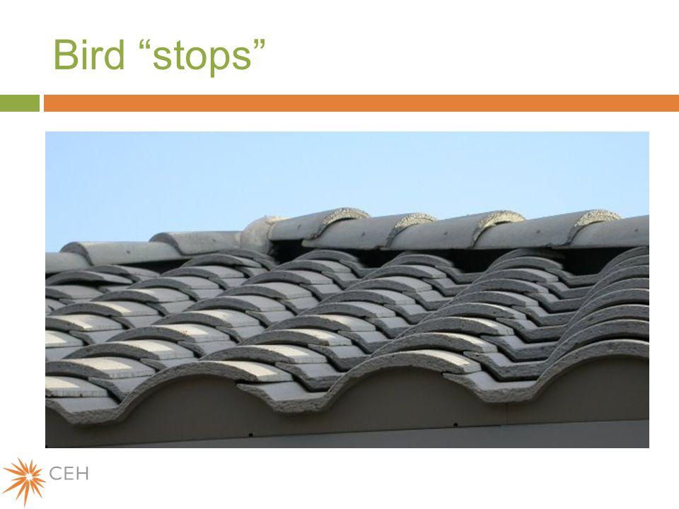 Bird stops