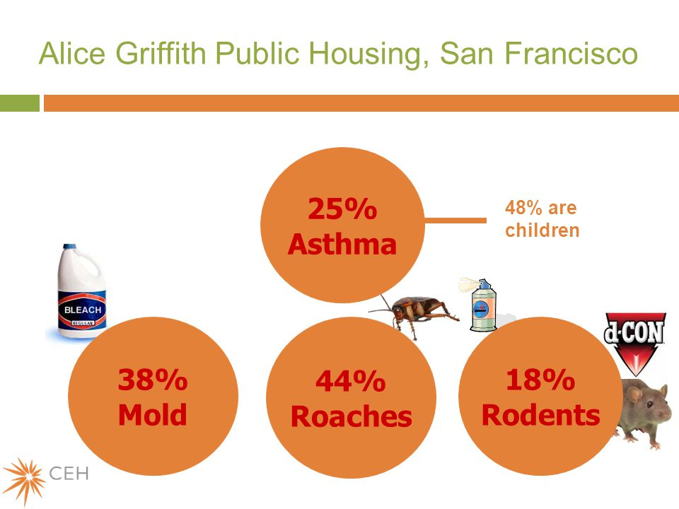 Alice Griffith Public Housing, San Francisco 25% Asthma 38% Mold 44% Roaches 48% are children 18% Rodents