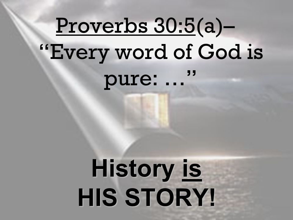 Proverbs 30:5(a)– Every word of God is pure: …
