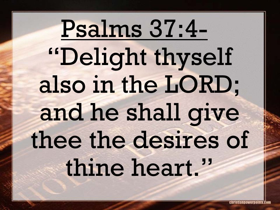 Deuteronomy 4:29 But if from thence thou shalt seek the LORD thy God, thou shalt find him, if thou seek him with all thy heart and with all thy soul.