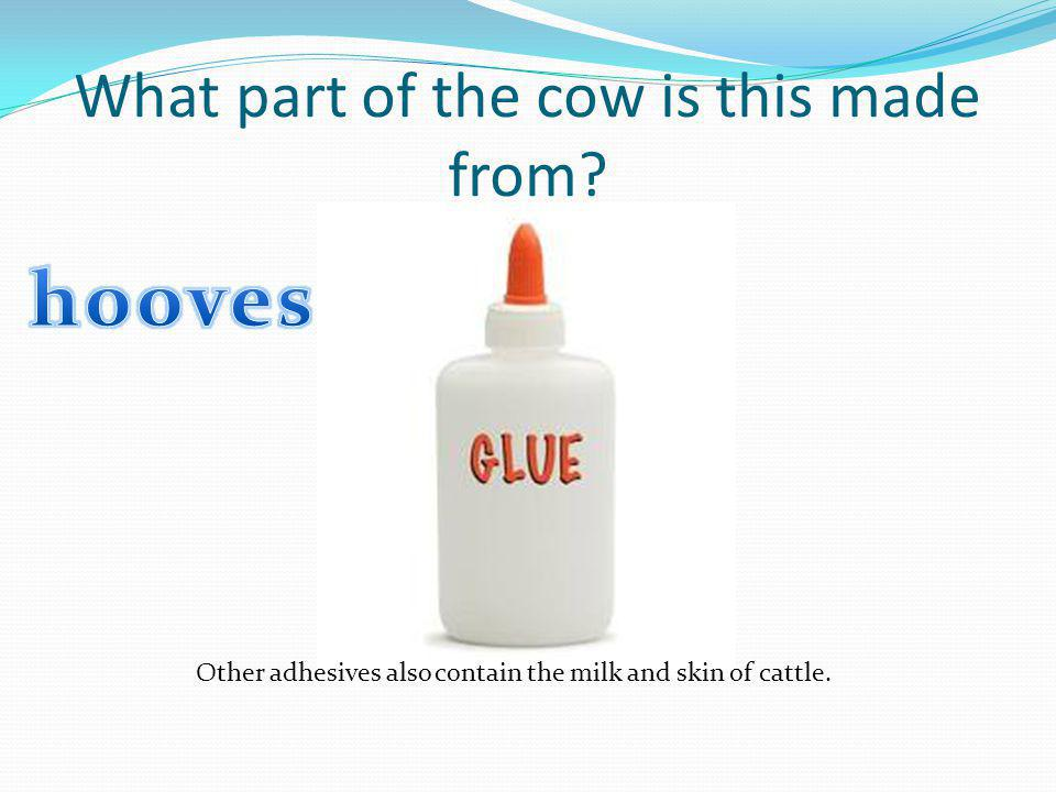 What part of the cow is this made from? Other adhesives also contain the milk and skin of cattle.