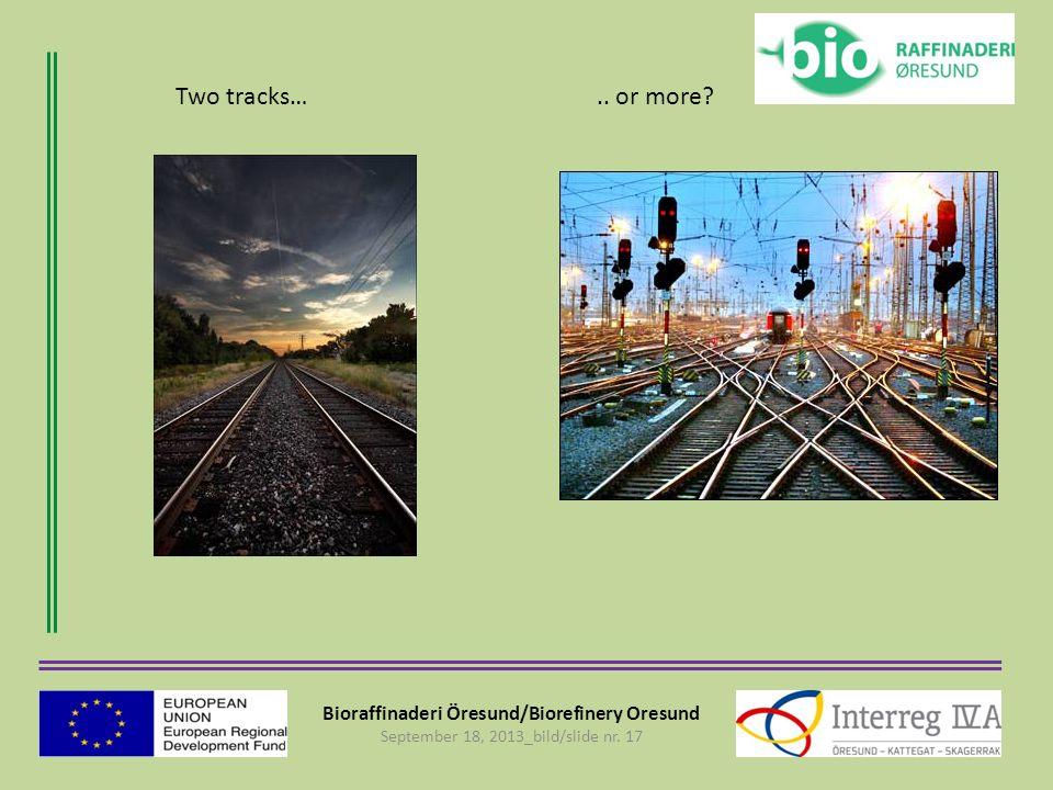 Bioraffinaderi Öresund/Biorefinery Oresund September 18, 2013_bild/slide nr. 17 Two tracks….. or more?