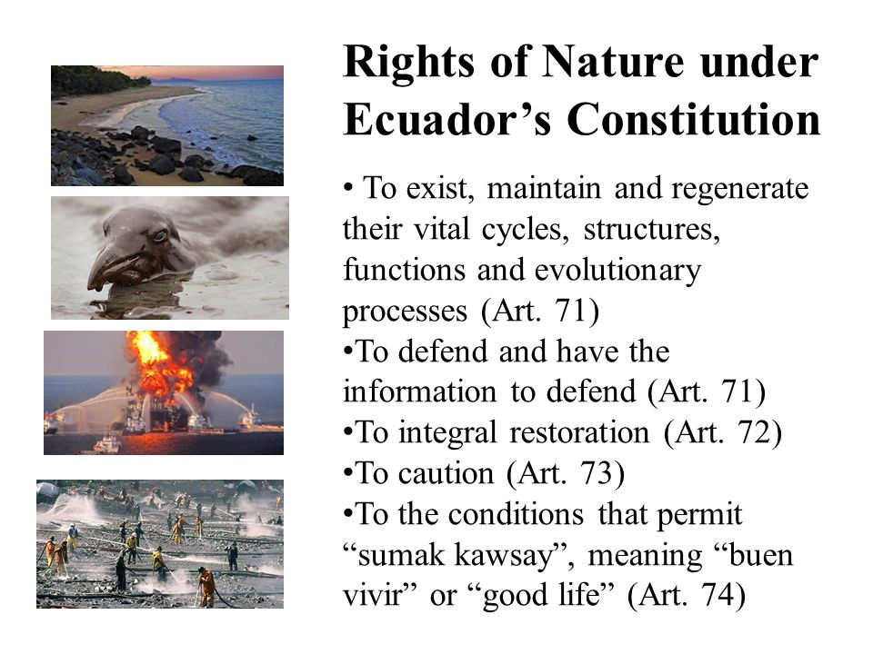 Rights of Nature under Ecuador's Constitution To exist, maintain and regenerate their vital cycles, structures, functions and evolutionary processes (