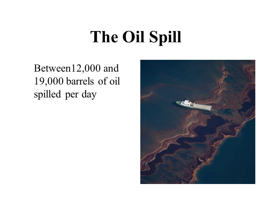 The oil spill in the Gulf of Mexico threatened the extinction of at least 7 species.